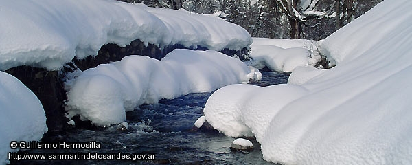 Foto Arroyo invernal (Guillermo Hermosilla)