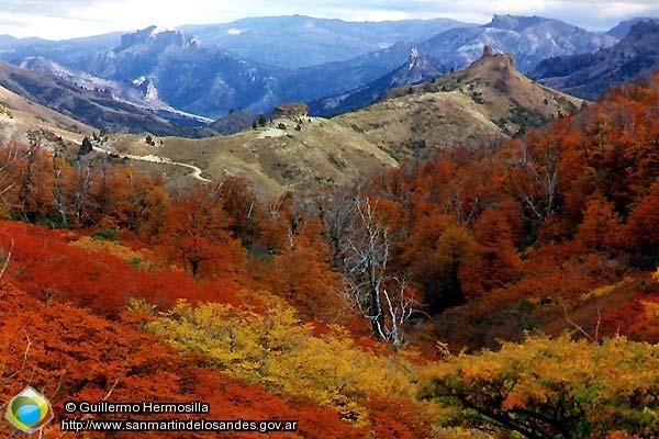 279 343 otoño en paso córdoba otoño en paso córdoba guillermo ...